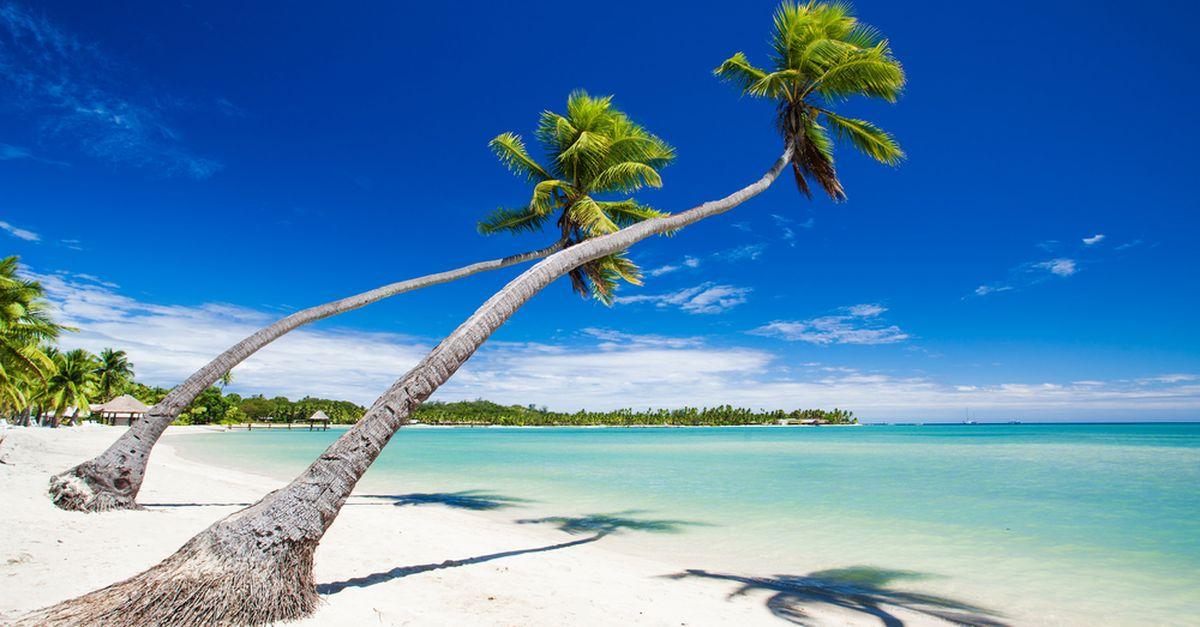 Splendida spiaggia bianca a golfo. Acqua cristallina e vegetazione tropicale rigogliosa