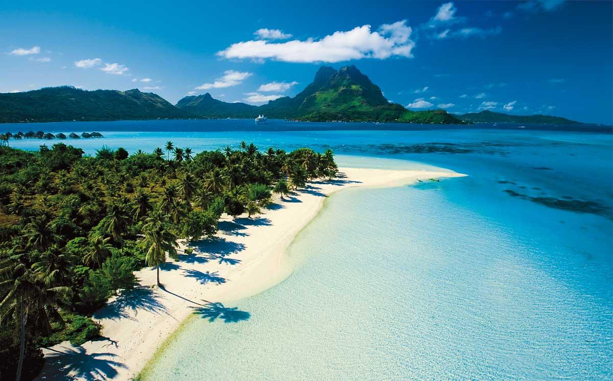 Una spiaggia che racchiude una fitta vegetazione in Polinesia