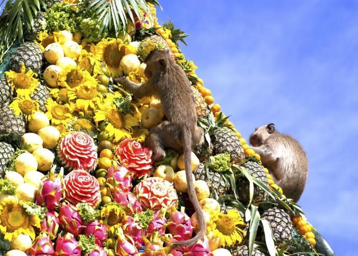 Le scimmie che scalano una montagna di frutta a Lopburi