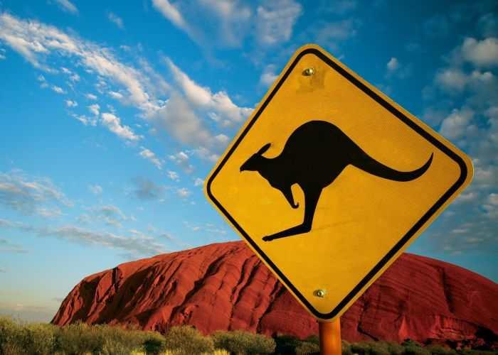 Cartello che avverte della presenza di canguri nella zona
