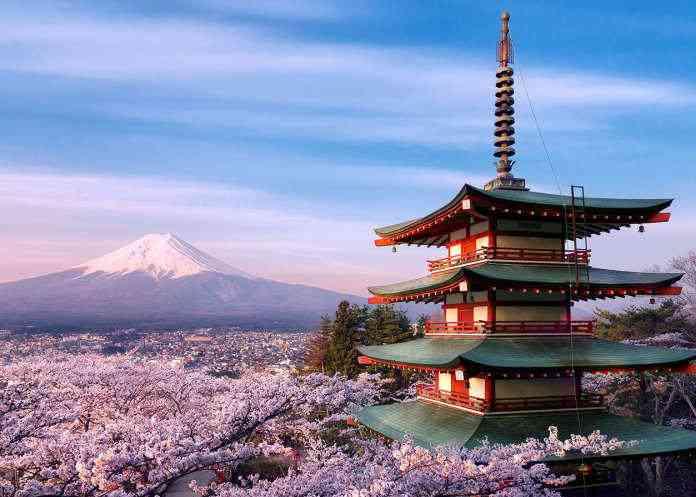 Un grande tempio che svetta da un bosco di ciliegi in fiore con il monte Fuji sullo sfondo